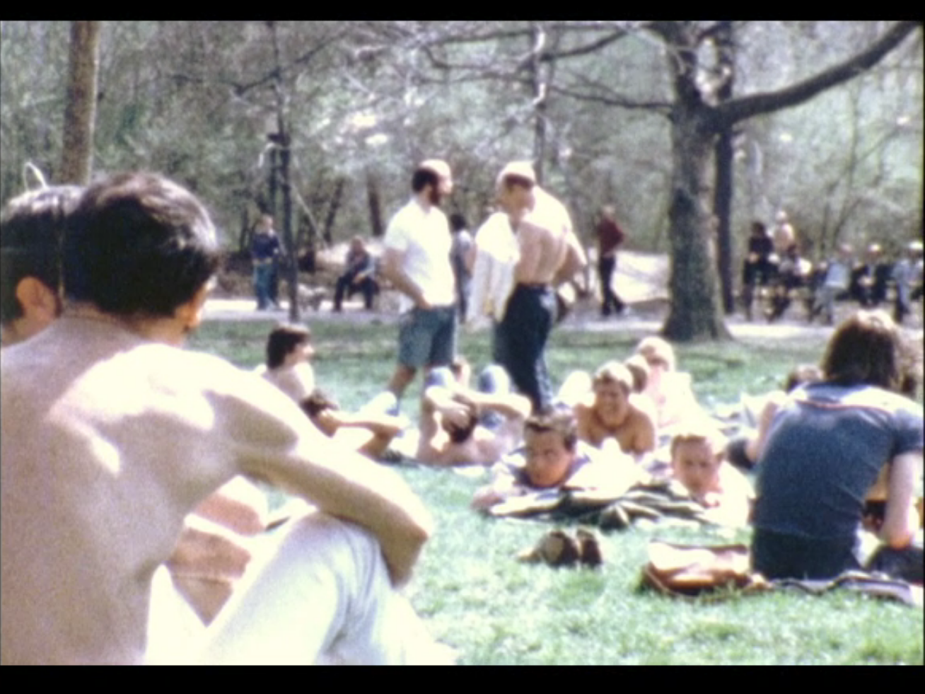 A day at the park. 1974. 8mm film. Still from the item Rudy Grillo Moving Image #2.
